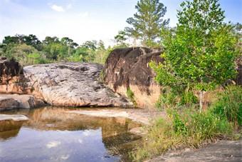 Les réserves naturelles